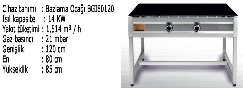 bgı-80120-1